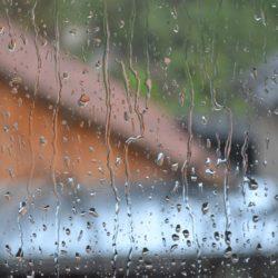 Нерешительный дождь, продуктивная доска и Эгида. #понедельниконтакой